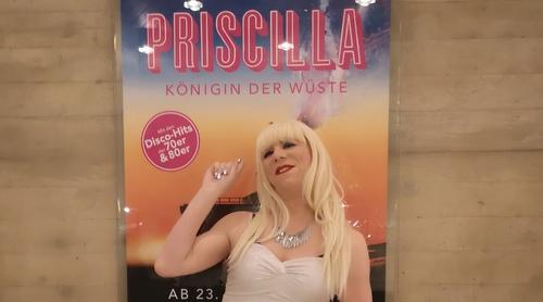 Priscilla Musical St. Gallen